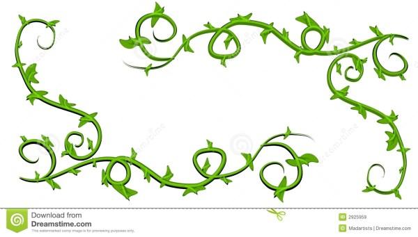 pumpkin vine clip art clipart