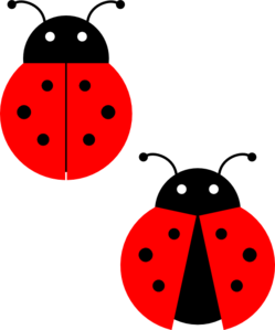 cute ladybug drawings clipart