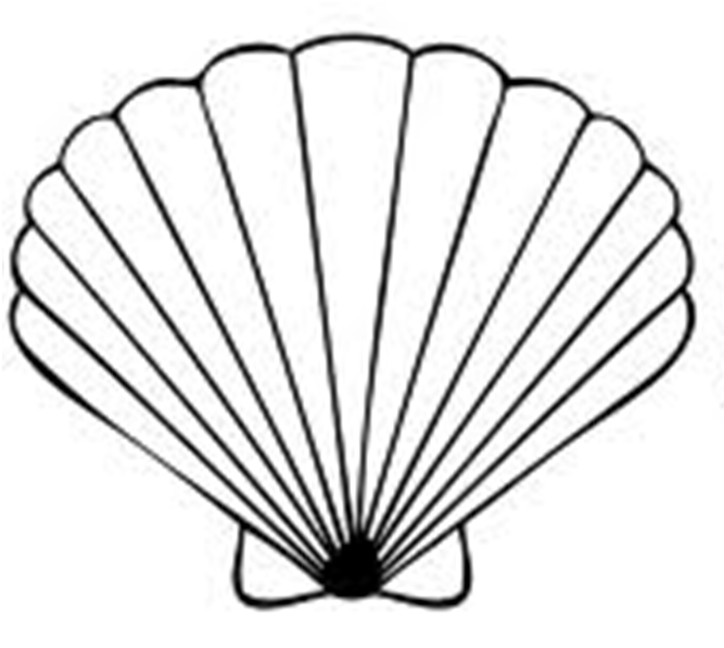 Clam Clipart Black And White