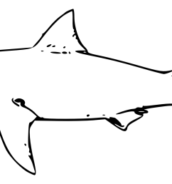 shark clipart black and white [ 2555 x 1036 Pixel ]