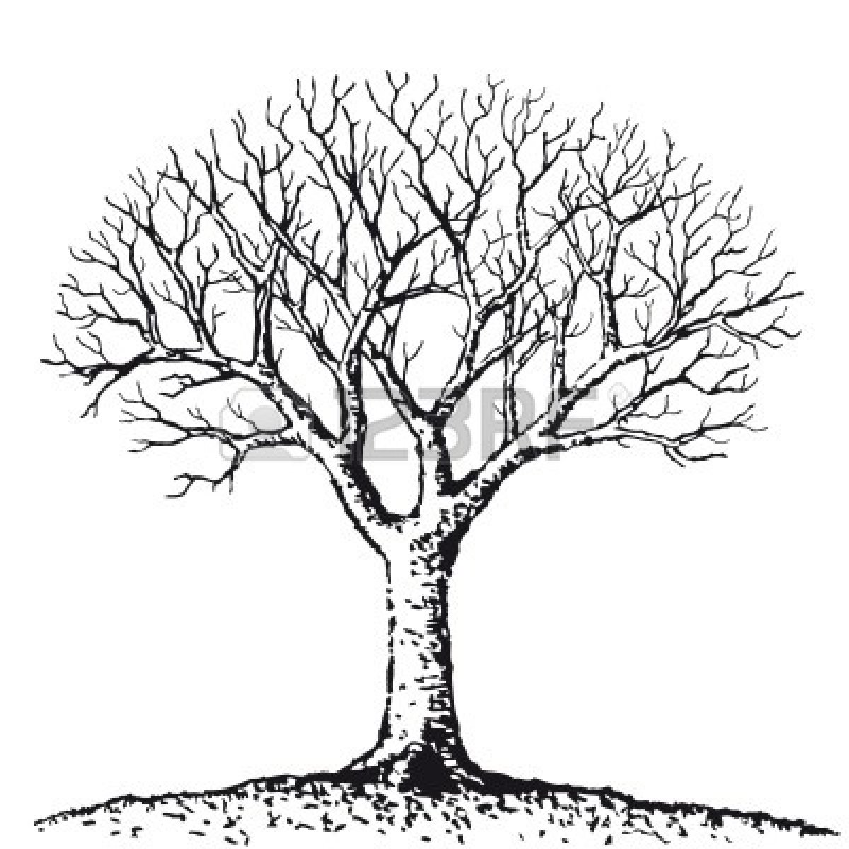 Simple Black And White Tree Drawing Clipart Panda