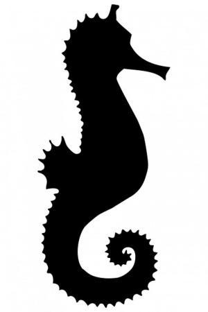 silhouette seahorse clipart simple shape domain clipartpanda publicdomainpictures shadow panda terms