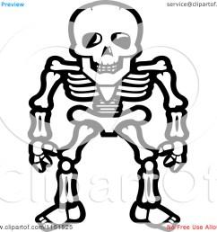 skeleton clip art [ 1080 x 1024 Pixel ]