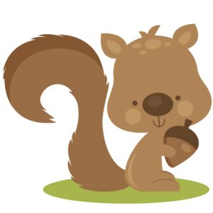 squirrel clipart panda