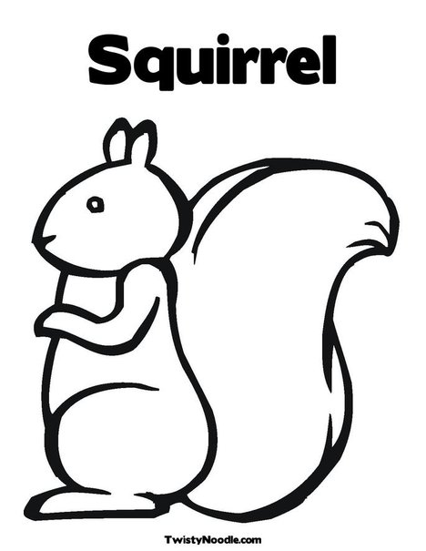 squirrel coloring page  clipart panda  free clipart images