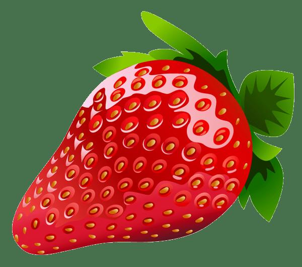 strawberry clip art clipart panda