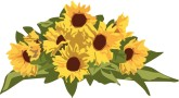 sunflower border design clipart