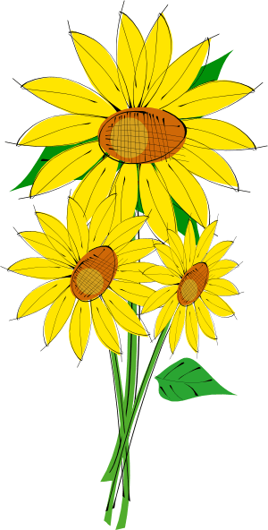 sunflower clip art borders clipart