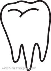 tooth teeth clipart molar clip flashcards plural clipground irregular cliparts proprofs clipartix 2220 1386 clipartmag