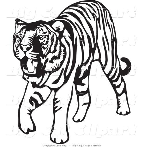 small resolution of tiger clip art