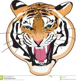 tiger clipart [ 1300 x 1316 Pixel ]