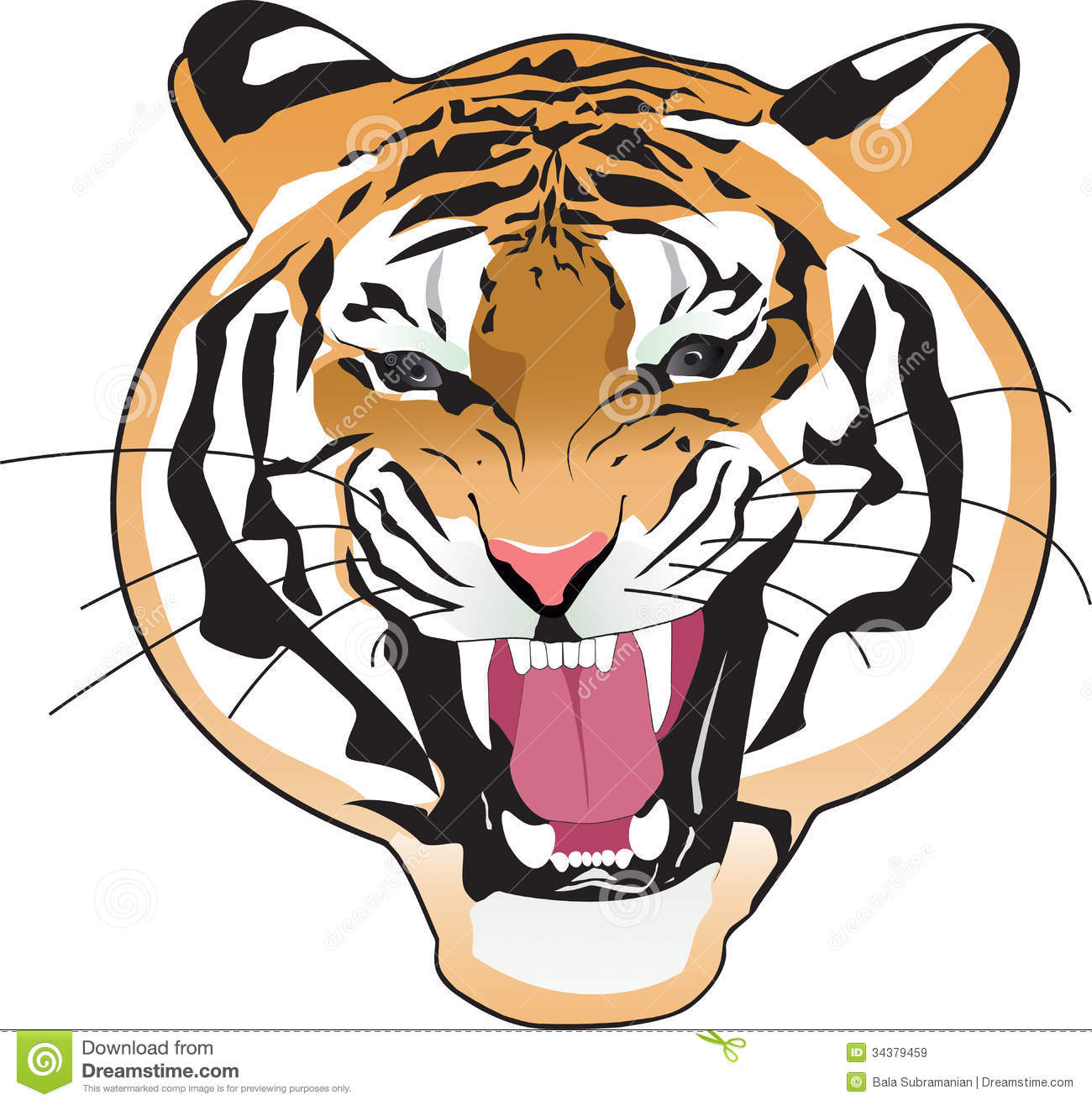 hight resolution of tiger clipart