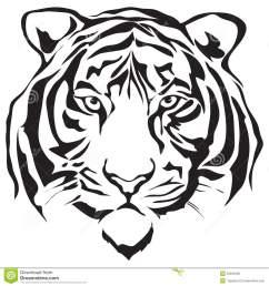 tiger face clip art [ 1300 x 1390 Pixel ]