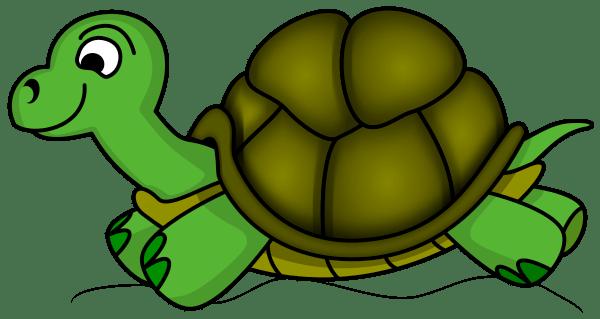 tortoise clipart panda