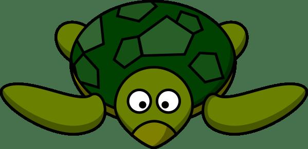turtle clip art clipart