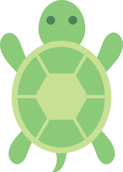 Baby Sea Turtle Top View Graphic