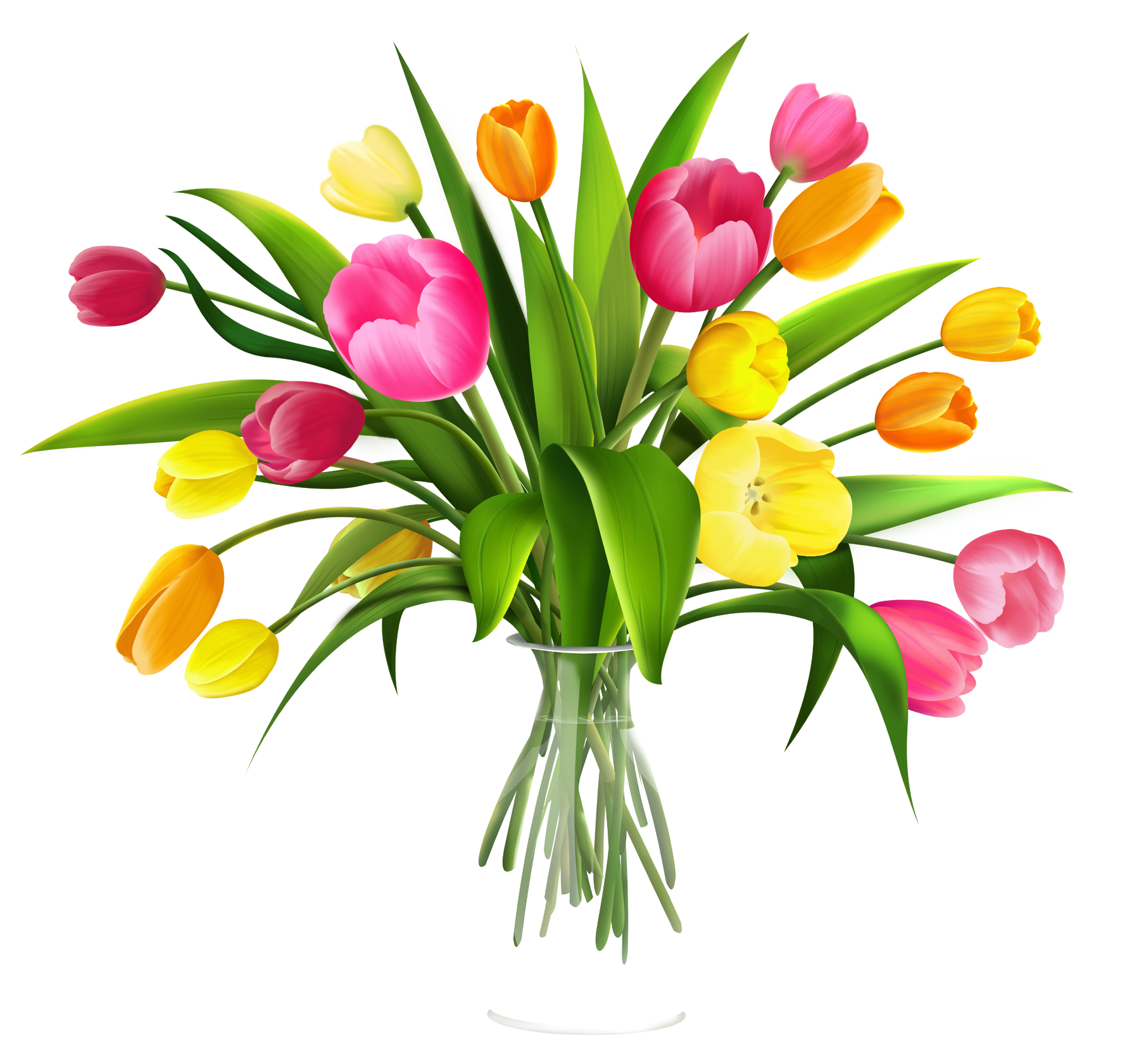 Image result for free clip art tulips transparent