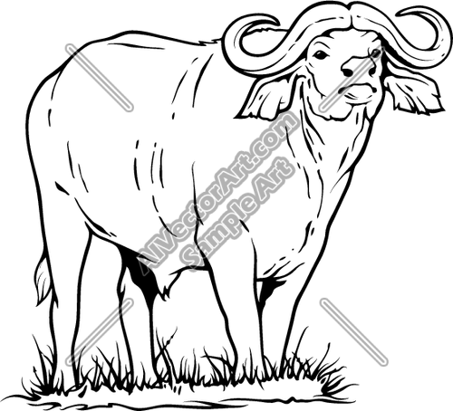Water 20buffalo 20clipart