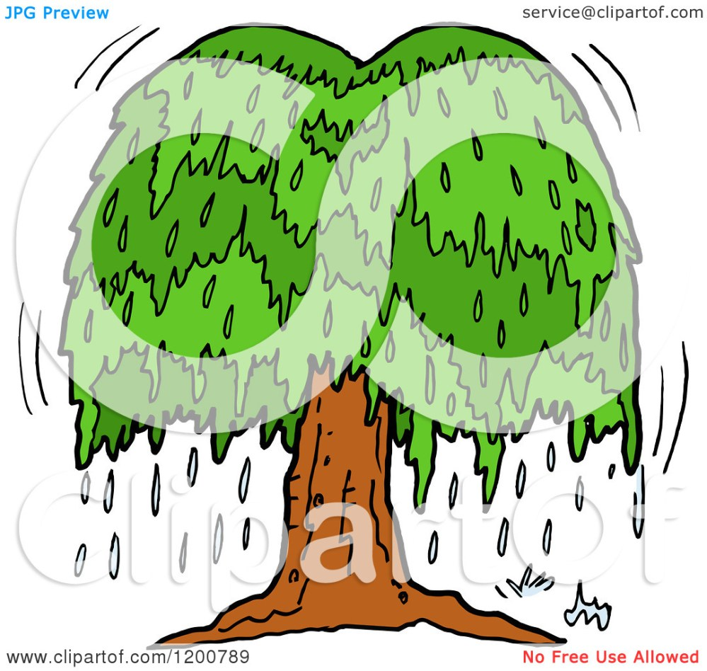 medium resolution of cartoon of a weeping willow clipart panda free clipart images rh clipartpanda com oak tree weeping willow leaf
