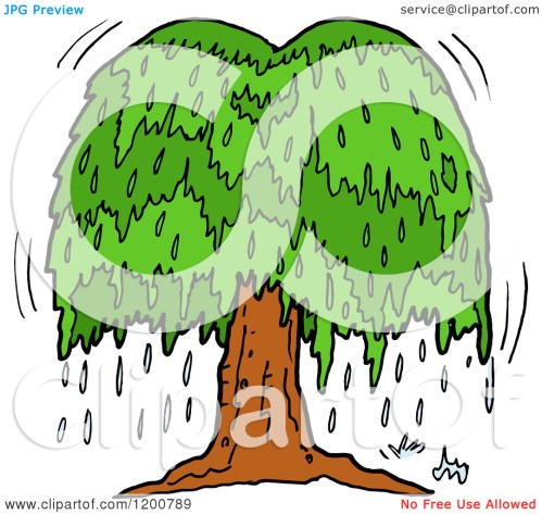small resolution of cartoon of a weeping willow clipart panda free clipart images rh clipartpanda com oak tree weeping willow leaf