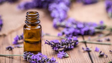 Lavender is a commonly used essential oil, often associated with sleep