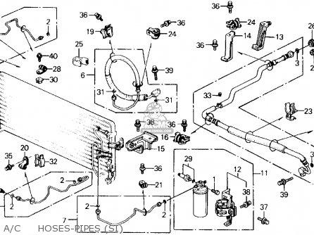 2001 Honda Accord Radiator Hose Diagram