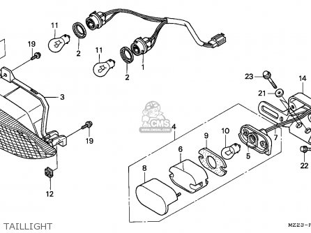 Chinese 50cc Wiring Diagram Accessories Wiring Diagram