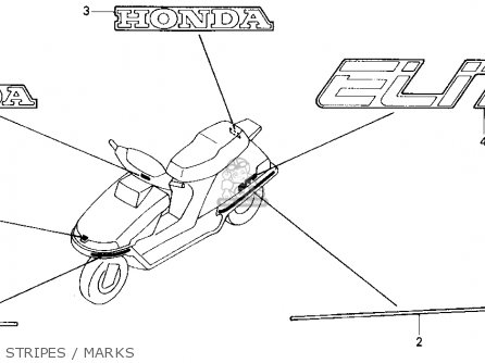 Honda CH250 ELITE 250 1989 (K) USA parts lists and schematics