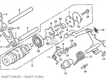Moped Motors Diagram Goped Motor Diagram wiring diagram