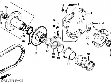 49cc Scooter Engine Diagram Gasket Chinese Scooter Engine