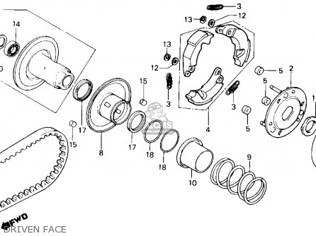 1986 Honda Spree Engine Diagram Honda Spree Carburetor