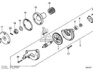 Honda NX125 TRANSCITY 1995 (S) ITALY parts lists and