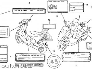 Honda SFX50 1999 (X) GERMANY parts lists and schematics
