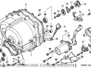 Honda TRX250TE FOURTRAX RECON 2002 (2) CANADA EC REF parts