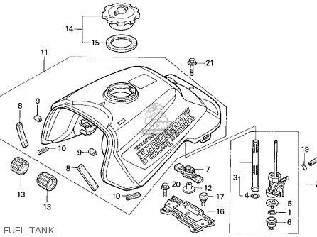Honda 300 Fourtrax Wiring Diagram Sketch Coloring Page