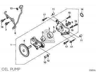 Honda TRX300EX SPORTRAX 2004 (4) CANADA parts lists and