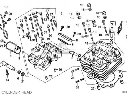 Trx 300 Rear Differential Diagram, Trx, Free Engine Image