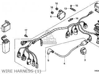 Honda TRX350TM FOURTRAX RANCHER 2000 (Y) USA parts lists