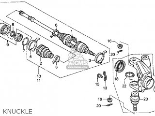 Honda Foreman Wire Harness Honda Cdi Unit Wiring Diagram