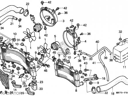 Honda Vfr 750 Fuse Box. Honda. Auto Wiring Diagram