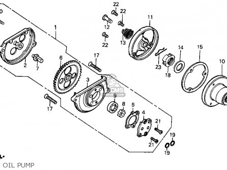 1998 Honda Cbr 600 F3 Wiring Diagram Auto Electrical Wiring Diagram