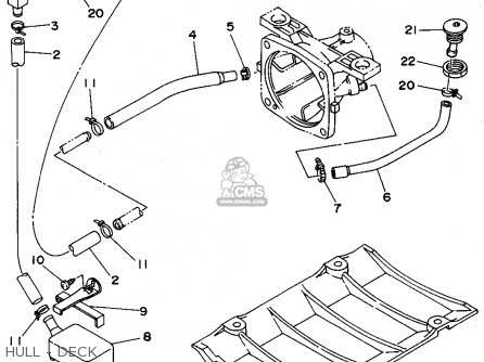 2004 Bmw 325i Serpentine Belt Diagram, 2004, Free Engine