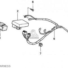 Australian Xr650r Wiring Diagram 1998 Dodge Neon Radio On Harness Dual Clutch ~ Elsalvadorla