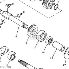 6 Pin Ac Cdi Wiring Diagram Sony Car Stereo Honda Elite 80 Engine - Imageresizertool.com