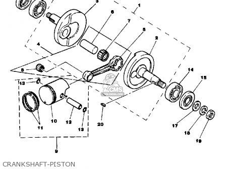 1981 Yamaha 250 Wiring Diagram Yamaha Motor Diagram Wiring