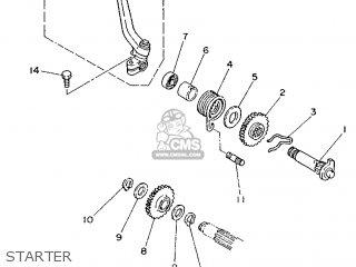 Yamaha Tzr250 1988 2xw1 France 282xw-351f1 parts list