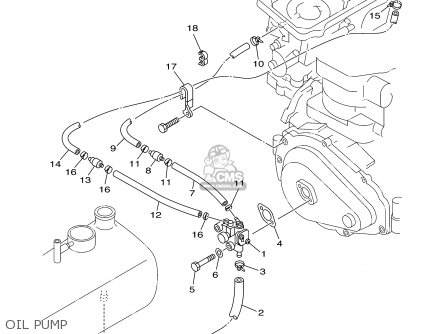 Kawasaki Dirt Bike Wiring Diagram Dirt Bike Oil Leak