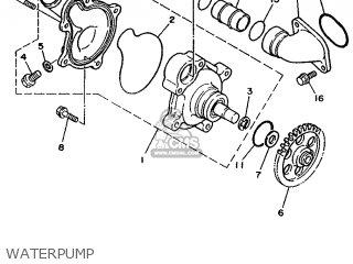 Yamaha Chappy 50cc Wiring Diagram Vino 125 Wiring Diagram
