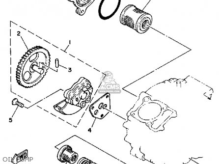 1955 Chevrolet Wiring Diagram, 1955, Free Engine Image For