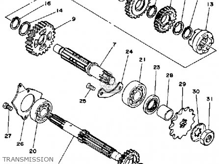 Scooter Transmission Diagram Scooter Chassis Diagram
